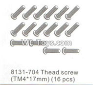 DHK RAZ-R Parts-Thead screw(TM4X17mm)-16pcs Parts-8131-704,DHK RAZ-R Parts,DHK Wolf Parts,DHK HOBBY 8133 8134 Parts