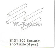 DHK RAZ-R Parts-Sus.arm short axle(4pcs) Parts-8131-802,DHK RAZ-R Parts,DHK Wolf Parts,DHK HOBBY 8133 8134 Parts
