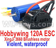 DHK RAZ-R Brushless motor and ESC Parts-Hobbywing 120A ESC and XinjI 3660 Brushless motor(Violent, waterproof) Parts,DHK RAZ-R Parts,DHK Wolf Parts,DHK HOBBY 8133 8134 Parts