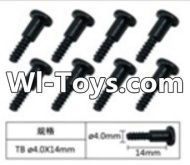 FeiYue FY-01 Spare Parts-60-04 W12076 Inner Hexagon T head Self-attack screws(8pcs)-4.0X14mm,FeiYue FY-01 RC Car Parts,FY01 FY-01 RC Truck Spare parts Accessories,1:12 4WD High Speed Buggy Parts