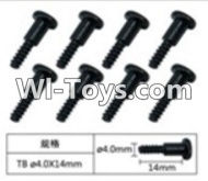 FeiYue FY-02 Spare Parts-60-04 W12076 Inner Hexagon T head Self-attack screws(8pcs)-4.0X14mm,FeiYue FY-02 RC Car Parts,FY02 FY-02 RC Truck Spare parts Accessories,1:12 4WD High Speed Buggy Parts