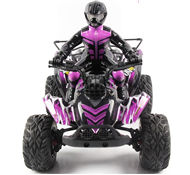 FeiYue FY-04 RC CAR,FY04 FY-04 RC Motorcycle 1/12 1:12 electric rc car,4WD remote control cross-country rock crawler with big wheels-Purple FeiYue-Car-All