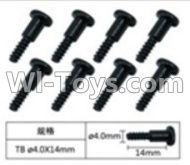 FeiYue FY-04 Spare Parts-60-04 W12076 Inner Hexagon T head Self-attack screws(8pcs)-4.0X14mm,FeiYue FY-04 RC Car Parts,FY04 FY-04 RC Motorcycle Truck Spare parts Accessories,1:12 4WD High Speed Buggy Parts