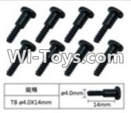 FeiYue FY-05 Spare Parts-60-04 W12076 Inner Hexagon T head Self-attack screws(8pcs)-4.0X14mm,FeiYue FY-05 RC Car Parts,FY05 FY-05 RC Truck Spare parts Accessories,1:12 4WD High Speed Buggy Parts
