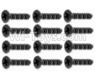 HaiBoXing HBX 12812 Parts-Screw Parts-Countersunk Screw-3X10mm(12PCS) Parts-S062,1/12 HaiBoXing HBX 12812 Survivor ST RC Truck Spare parts Accessories