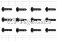 HBX 12881 VORTEX Parts-Screws Parts-Countersunk Screw(12pcs)-3X10mm Parts-S062,HaiBoXing HBX 12881 VORTEX RC Car Parts