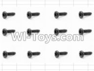 HBX 12881 VORTEX Parts-Screws Parts-Round Head Self Tapping Screw(12pcs)-3X6mm Parts-S071,HaiBoXing HBX 12881 VORTEX RC Car Parts