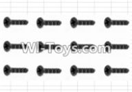 HBX 12882P ONSLAUGHT Parts-Screws Parts-Countersunk Self Tapping Screw(12pcs)-2.6X6mm Parts-S061,HaiBoXing HBX 12882P ONSLAUGHT RC Car Parts