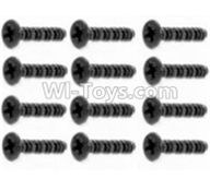 HBX 12891 Dune Thunder Parts-Round Head Self Tapping Screws-2.6X25mm(12PCS) Parts-S201,1/12 HaiBoXing HBX 12891 Dune ThunderRC Truck Parts