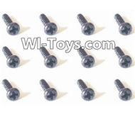 HBX Devastator Parts-Head Screws(12PCS)-1.5x2.5mm-24771,HaiBoXing HBX 2098B Devastator 1/24th RC Car Parts