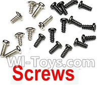 Subotech BG1504 Parts-Screws Set,Subotech BG1504 RC Car Spare parts Accessories,1:16 2WD BG1504 RC Racing Car parts,High Speed Drifting Buggy Parts