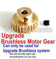 Wltoys 12429 Parts-0127-04 Upgrade Motor gear(Can only be used for Upgrade Brushless set,We will according the car you buy to sent you the right version size,Wltoys 12429 1/12 RC Car Parts