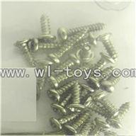 LS-209-parts-40 Screws,LianSheng toys model LS209 RC Helicopter parts