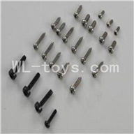 WLtoys V931 RC helicopter parts WL toys V931 AS350 parts-37 Screws(Total 23pcs)